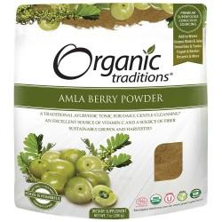 Βιολογική Άμλα σε Σκόνη | Amla Powder Organic 200gr