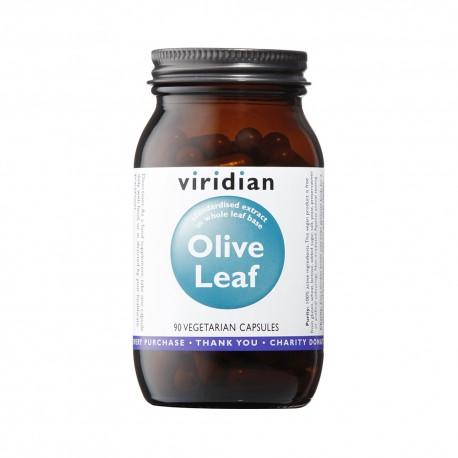Φύλλα Ελιάς   Olive Leaf Extract 90caps