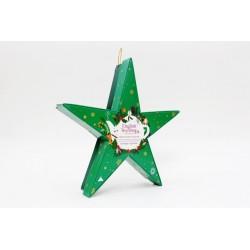Συλλογή Χριστουγέννων | Holiday Collection Organic Green Star | 6 πυραμίδες.